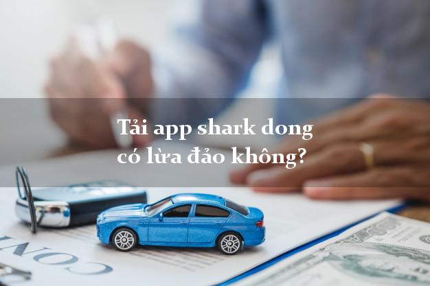 Tải app shark dong có lừa đảo không?